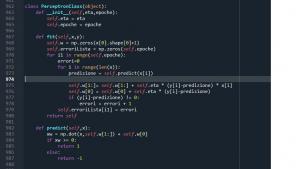 Codice contenente l'algoritmo del Perceptron